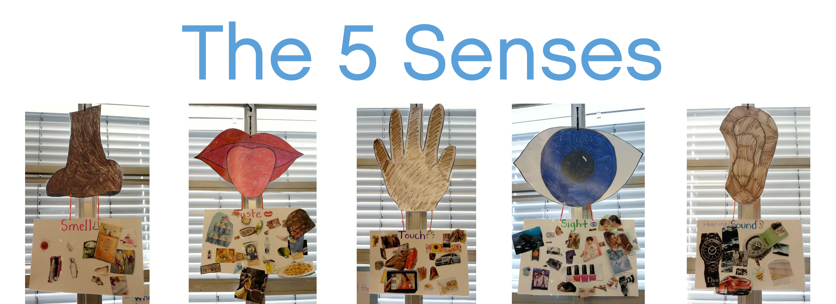 Five Sense Worksheet New 327 Five Senses Preschool Arts