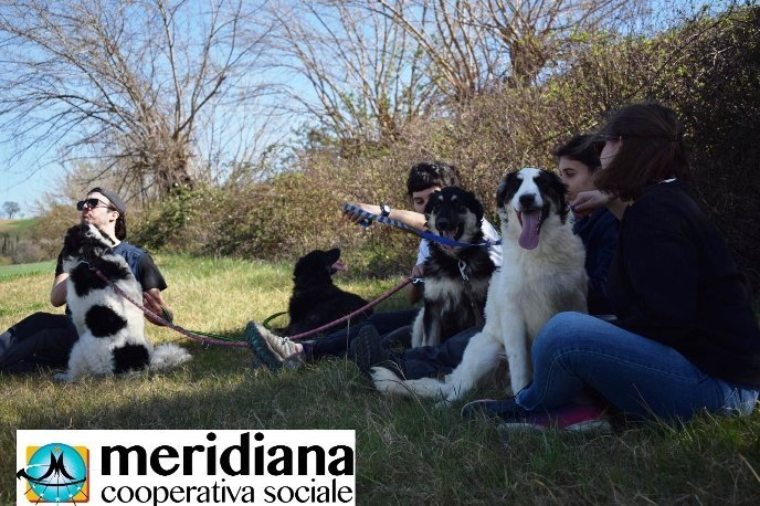 Puppy Class Canile Meridiana