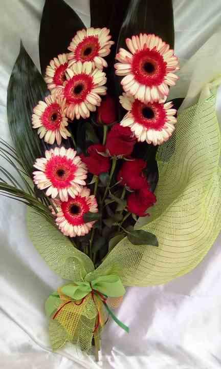 Bouquet Serre Meridiana Cooperativa Sociale Macerata