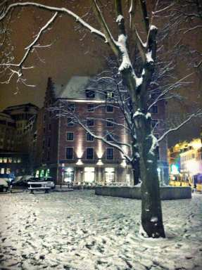 Bruselas nevado