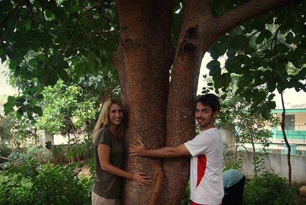 Freedom Tree Memorial, gambia