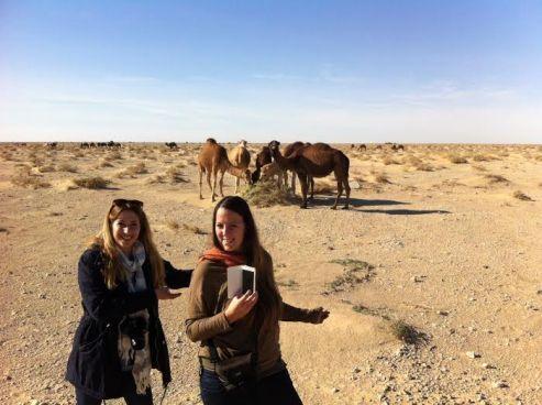 Desierto de Tozeur, Túnez
