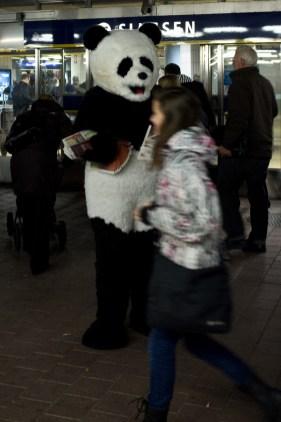 Pandamorgon