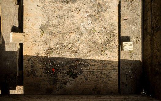 Abstrakt-i-trä