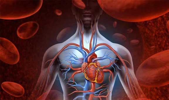cardio-vascular-diseases