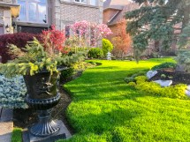 Plant Combinations Curb Appeal - Merrifield Garden Center