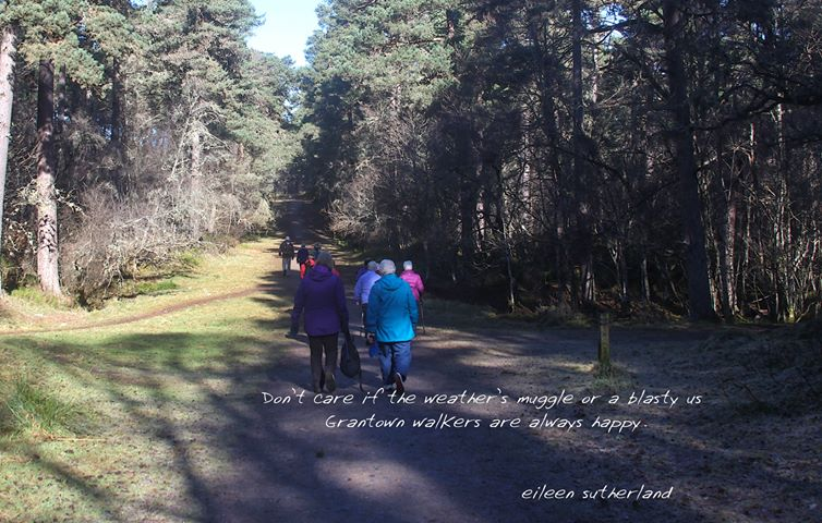 A poem set on a photo of walkers in forest
