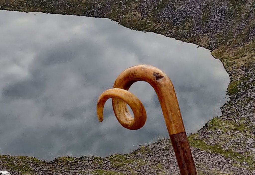 Sheep's horn walking stick with two cuts in the horn