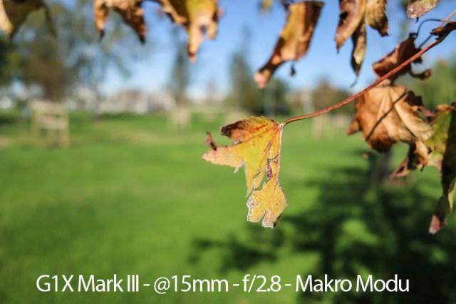 G1X Mark III Macro
