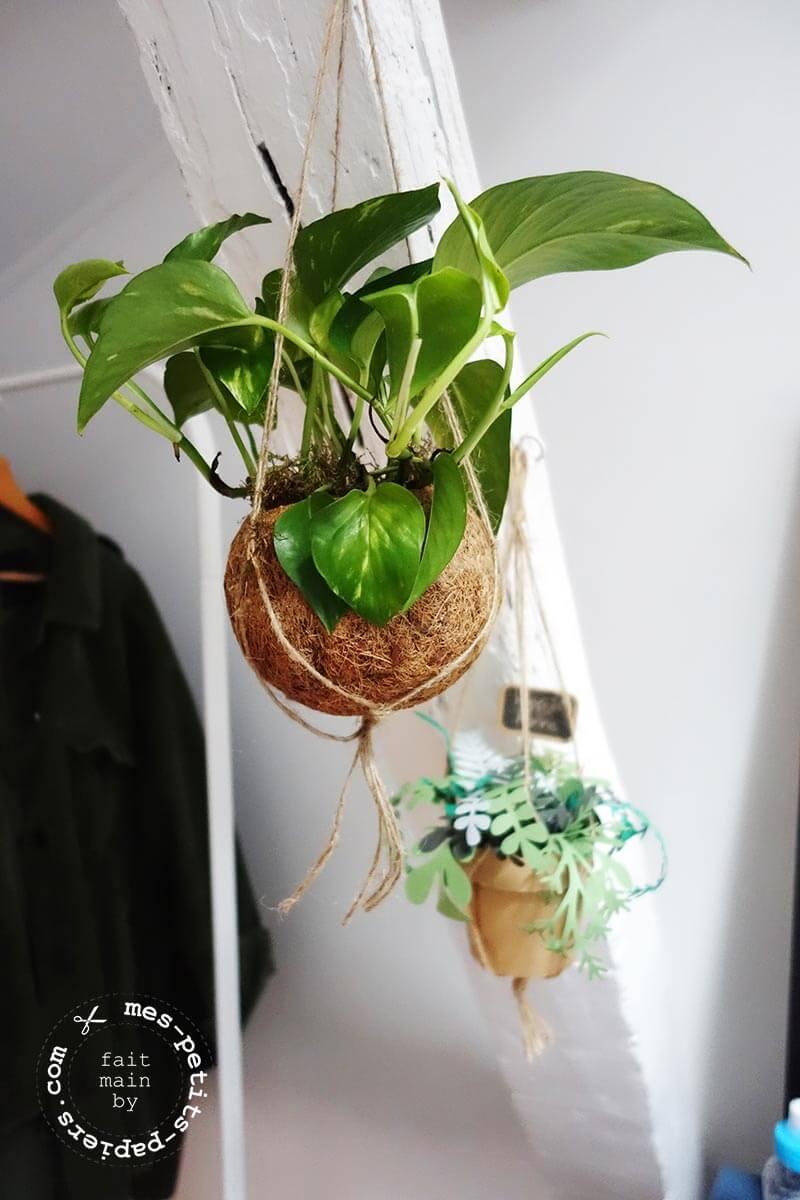 mes-petits-papiers -jolie-plante-papier-10