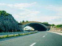 Ecoduct pentru protecția animalelor. În lipsa studiilor de mediu nu se știe dacă, unde și câte astfel de ecoducte trebuie amplasate pe Sibiu - Pitești