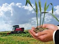 APIA Sibiu începe plata în avans pentru fermieri