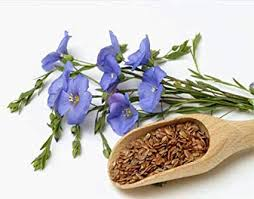 LEACURI DIN NATURĂ | Semințele de in (Linum usitatissimum)