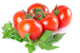 Programul de sprijin pentru tomate continuă și în acest an