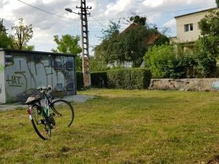 Pune umărul la realizarea unui spațiu verde cum ți-l dorești! Unde va fi prima grădină urbană din Sibiu cu implicarea comunității?