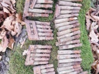 FOTO: Pericol la Roșia! Cartușe grămadă găsite lângă poligon