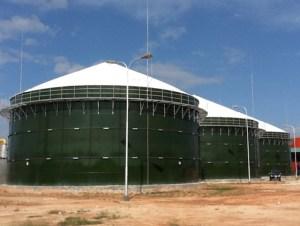 Limbah Kelapa Sawit untuk Biogas