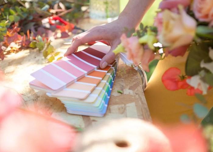 nuancier de couleurs décoratrice