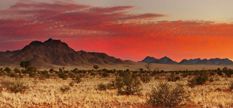 Kalahari Desert - Image credit: kerdowney.com