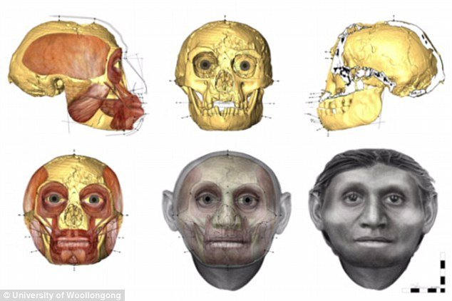 Hobbit skulls