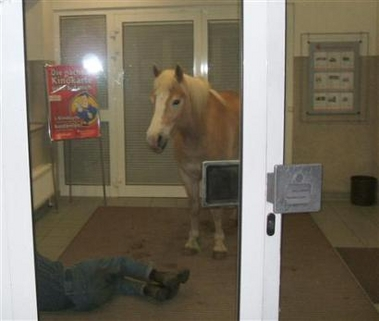 ATM Horse