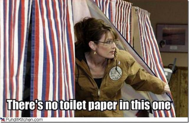 Sarah palin vote