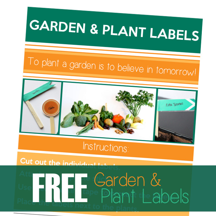 graphic regarding Printable Plant Labels named Printable Backyard and Plant labels