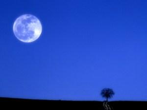 luna-piena