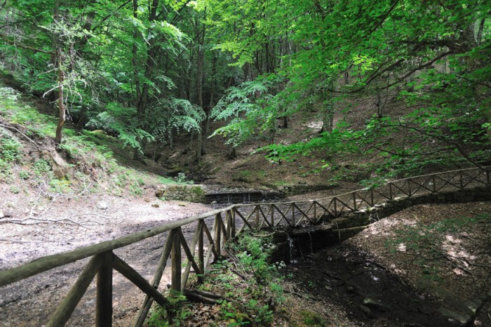 Escursione in montagna e tanto altro a Montalbano Elicona