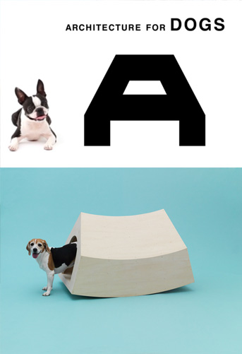 architecture_dogs