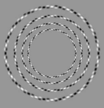 optic_circles