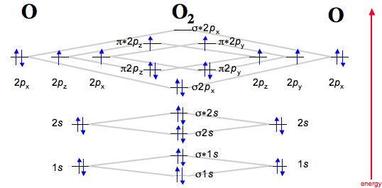 cn molecular orbital diagram 2009 ford f150 fuse panel 科学网—[转载]diatomic species by theory - 郭令举的博文