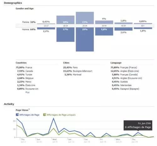 graphique des données démographiques Facebook