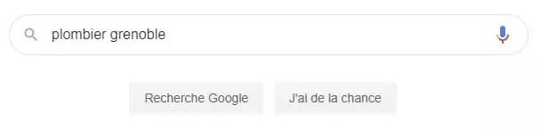 recherche google pour plombier à Grenoble