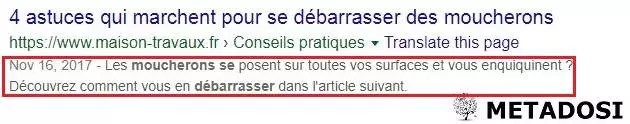 Exemple de méta description pour le SEO on page