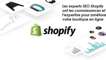 Expert SEO Shopify comment trouver un expert en référencement naturel Shopify