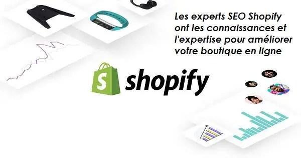 Les experts en référencement Shopify ont les connaissances et l'expertise pour améliorer votre boutique en ligne.