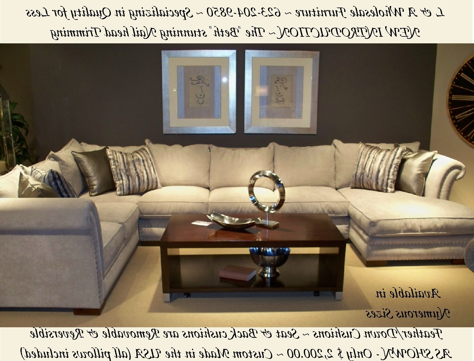 Displaying Gallery Of Down Feather Sectional Sofas View 4 20 Photos