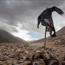 The Flying Scarecrow nuevo grupo con conocidos de la escena bizkaia