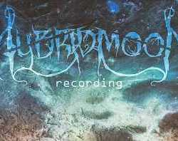 Hybrid Moon busca vocalista