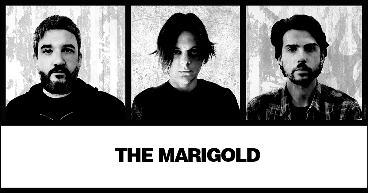 THE MARIGOLD picture