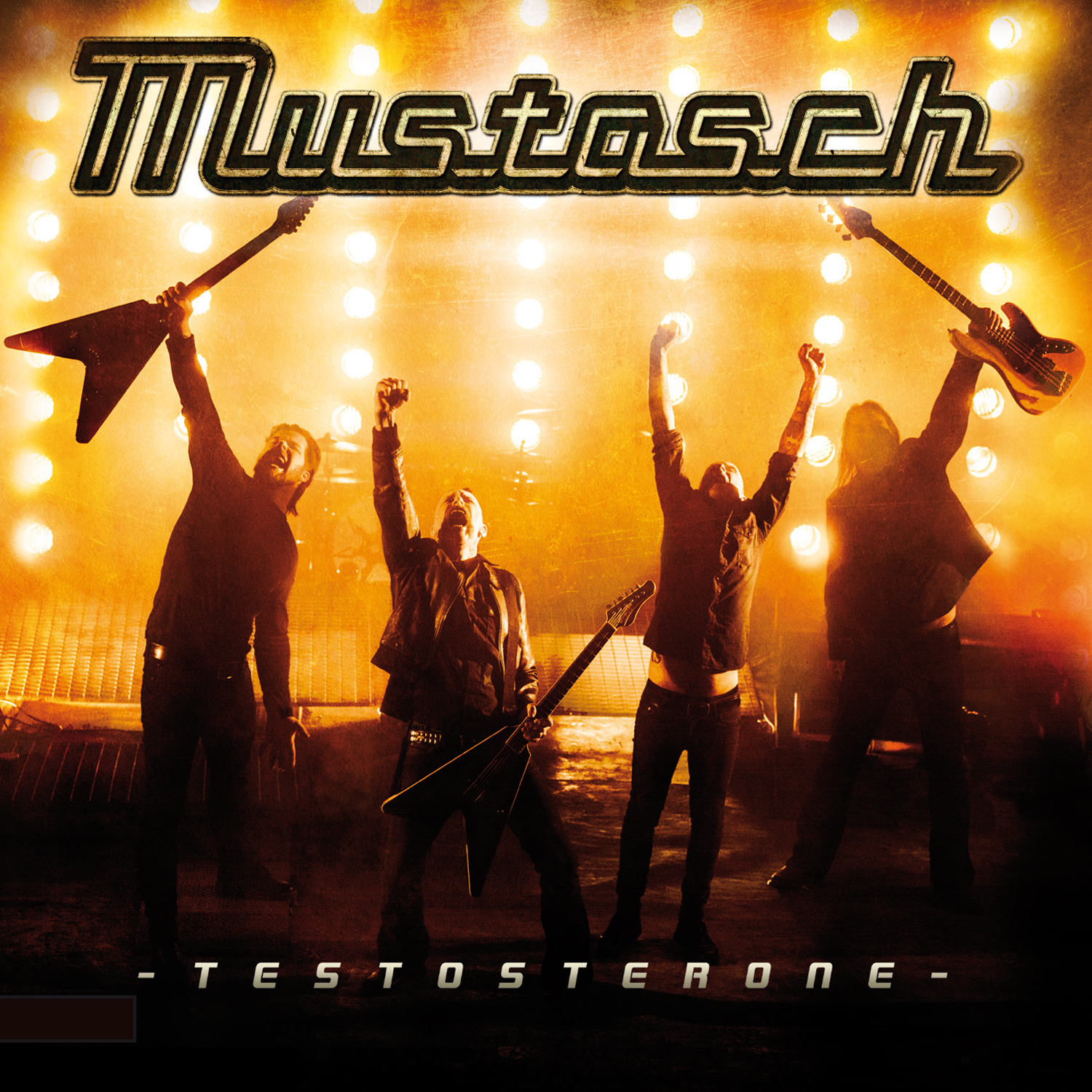 You are currently viewing Mustasch<br>Testosterone