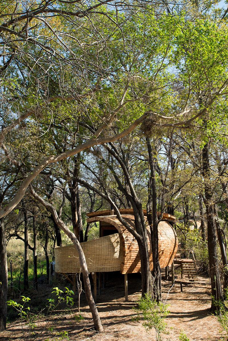 Safari de lujo en el corazn del delta de Okavango  METALOCUS