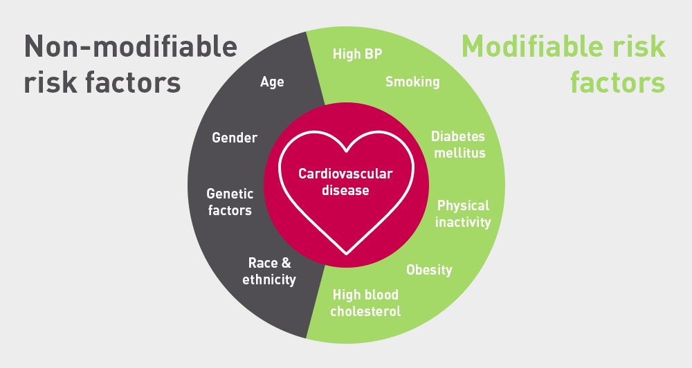 Symptoms to Know if You May Suffer a Cardiovascular ...