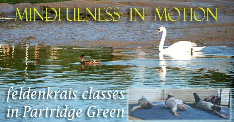 im mindfulness in motion feldenkrais classes