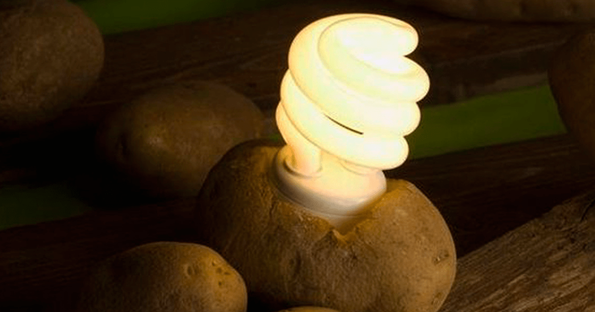 Use A Potato To Keep Your Room Lit For Over A Month