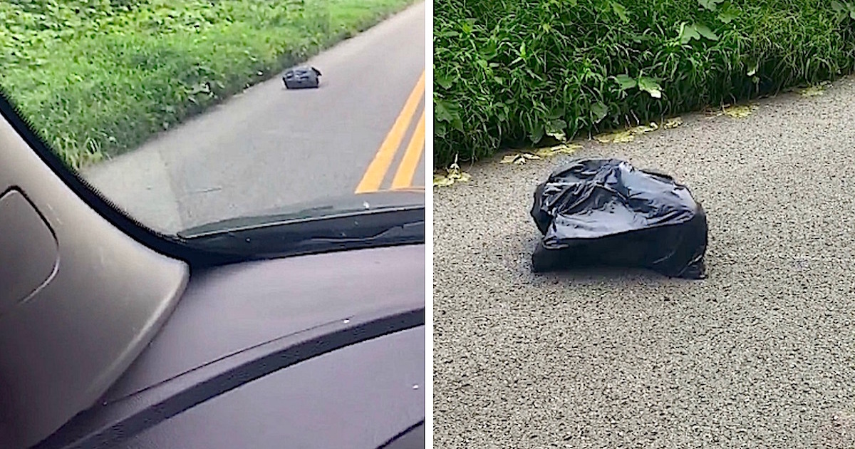 Mom Stops To Investigate Trash Bag On The Side Of The Road