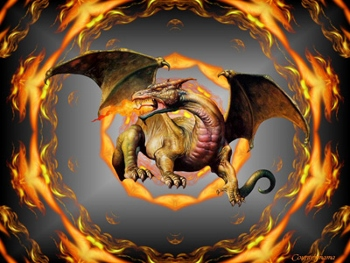 dragon (350x263)