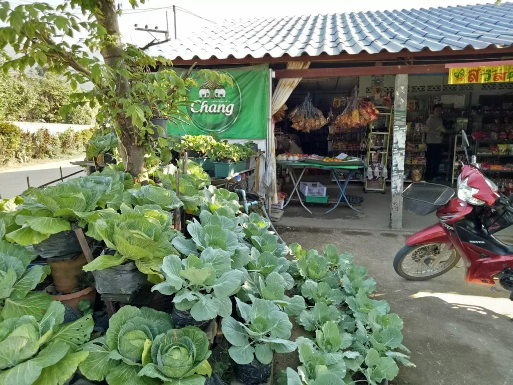 חנות ירקות בדרך למלון בורה רזורט בצ'אנג ראי
