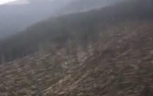 immagine news luragano-in-veneto-un-cataclisma-video-meteo-e-analisi